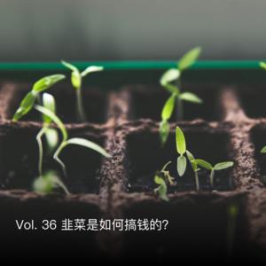 Vol. 36 韭菜是如何搞钱的?