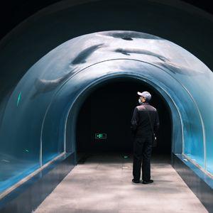 特刊「如潮流徙」03·林培源:在文学的入口处寻找出口