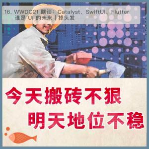 16.Catalyst、SwiftUI、Flutter 谁是 UI 的未来?